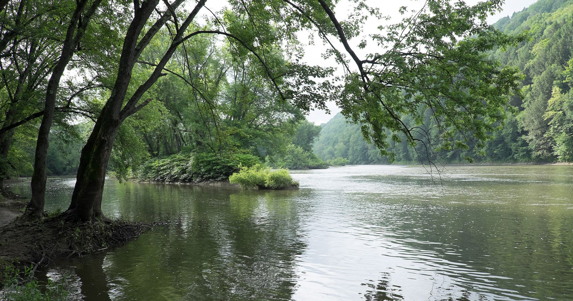 Site of the priesthood restoration at the Susquehanna River. Image via Church of Jesus Christ.