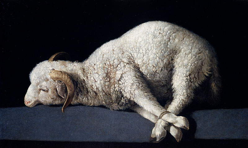 Agnus Dei by Francisco de Zurbarán via Wikimedia Commons.