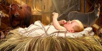 Safe in a Stable, by Dan Burr. Image via ChurchofJesusChrist.org